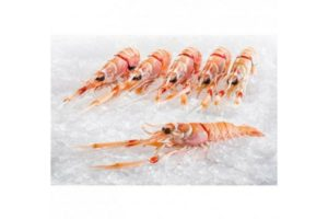 New Zealand frozen Langoustine (50g-66g/unit)