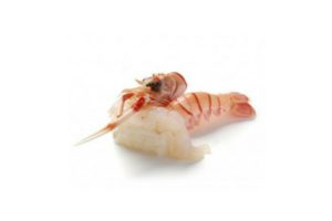 New Zealand frozen Langoustine (66g-100g/unit)