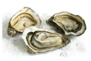 Frozen Halfshell Oyster- Medium Size