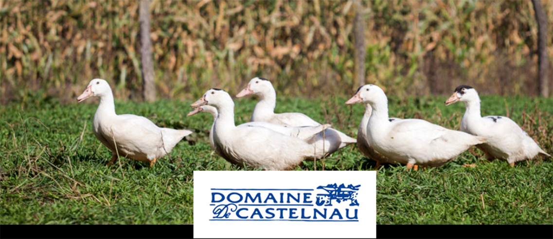 THE DUCK PRODUCTS FROM DE CHALOSSE OF FRANCE