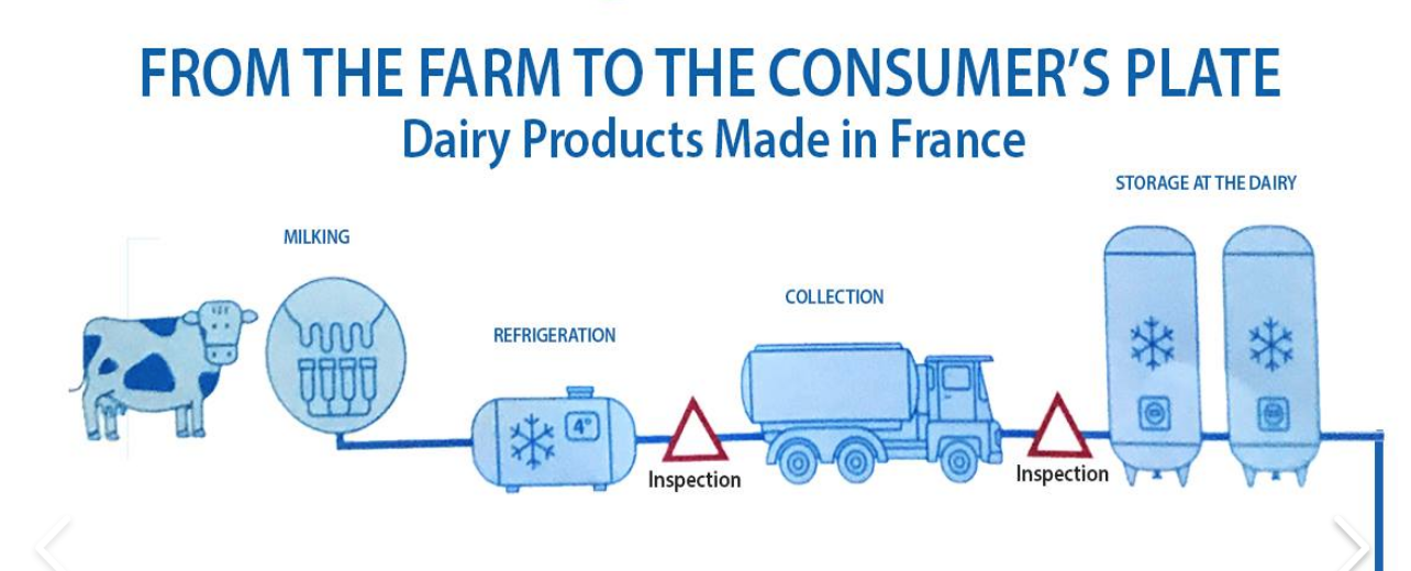 Dairy products made in France: From the farm to the consumer's plate
